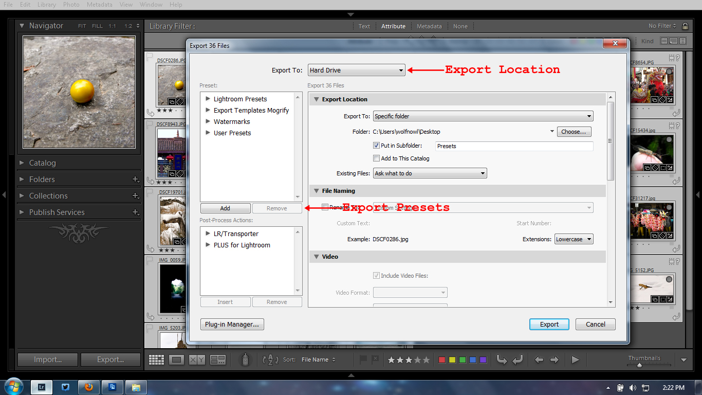 Export Presets